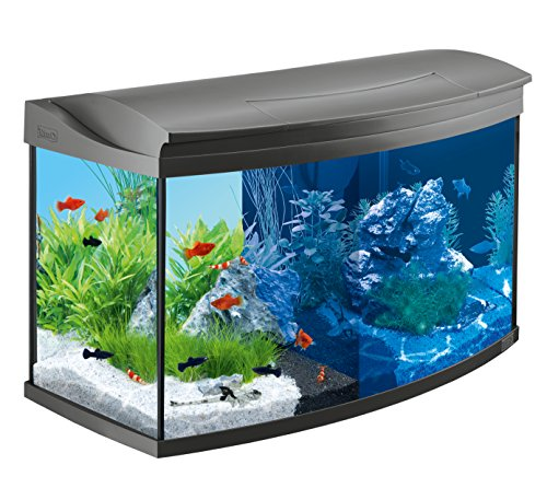 Tetra AquaArt Evolution Line LED Aquarium-Komplett-Set 100 Liter